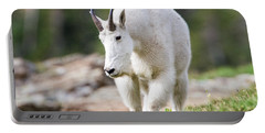 Portable Battery Charger featuring the photograph High Country Mountain Goat by Jack Bell