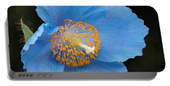 Himalayan Gift -- Meconopsis Poppy Portable Battery Charger by Byron Varvarigos