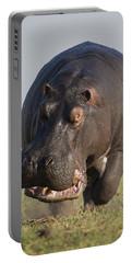 Hippopotamus Bull Charging Botswana Portable Battery Charger