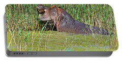 Hippopotamus Eating Grass In Saint Lucia Estuary To The Indian Ocean-south Africa  Portable Battery Charger