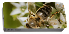 Honey Bee On Garlic Chive Portable Battery Charger