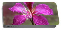 Hong Kong Orchid Tree Flower Portable Battery Charger by Venetia Featherstone-Witty
