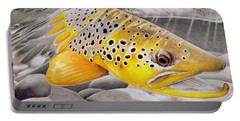 Salmon Portable Batteries Chargers