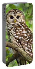Portable Battery Charger featuring the photograph Hoot Owl by Christina Rollo