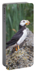 Portable Battery Charger featuring the photograph Horned Puffin by Chris Scroggins