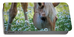 Horse And Daisies Portable Battery Charger by Paul Freidlund