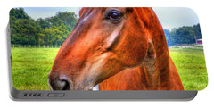 Horse Closeup Portable Battery Charger