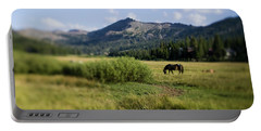 Horse Grazes In Pasture, California Portable Battery Charger