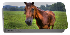 Horse In A Field Portable Battery Charger