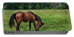 Horse In Holland Michigan Portable Battery Charger