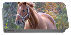Portable Battery Charger featuring the photograph Horse Muscle by Glenn Gordon
