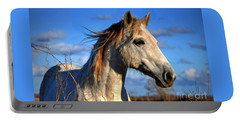 Horse Portable Battery Charger by Savannah Gibbs