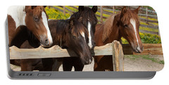 Horses Behind A Fence Portable Battery Charger