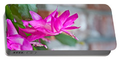 Hot Pink Christmas Cactus Flower Art Prints Portable Battery Charger