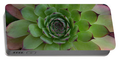 Houseleek Sempervivum Portable Battery Charger