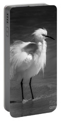 How Do I Look- Bw Portable Battery Charger