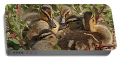 Portable Battery Charger featuring the photograph Huddled Ducklings by Kate Brown