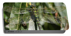 Huge Dragon-fly In Detail. Portable Battery Charger