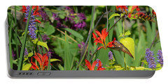 Hummingbird And Crocosmia Lucifer Portable Battery Charger