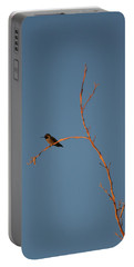 Hummingbird Portable Battery Charger by David S Reynolds