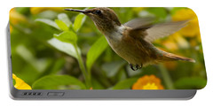 Hummingbird Looking For Food Portable Battery Charger