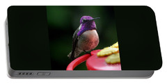Portable Battery Charger featuring the photograph Hummingbird Male Costa's by Jay Milo