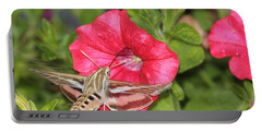 Hummingbird Moth Portable Battery Charger by Tiffany Erdman