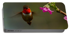 Hummingbird Portable Battery Charger by Tikvah's Hope