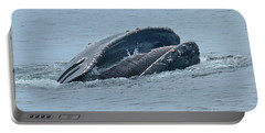 Portable Battery Charger featuring the photograph Humpback Whale  Lunge Feeding Monterey Bay 2013 by California Views Mr Pat Hathaway Archives