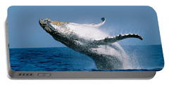 Humpback Whale Megaptera Novaeangliae Portable Battery Charger