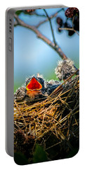 Hungry Tree Swallow Fledgling In Nest Portable Battery Charger
