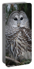 Portable Battery Charger featuring the photograph Hunter by Sharon Elliott