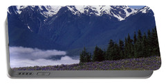 Hurricane Ridge Portable Battery Charger