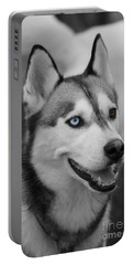 Husky Portrait Portable Battery Charger by Vicki Spindler
