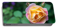 Portable Battery Charger featuring the photograph Hybrid Tea Rose by Matt Malloy