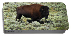 I Am The King Of This Meadow Portable Battery Charger by Ausra Huntington nee Paulauskaite