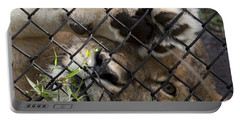 I Want To Go Home - Female African Lion Portable Battery Charger