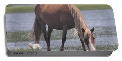 Ibis And Shackleford Pony 2 Portable Battery Charger