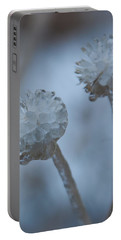 Portable Battery Charger featuring the photograph Ice-covered Winter Flowers With Blue Background by Cascade Colors