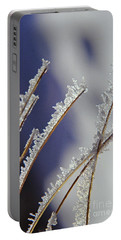 Portable Battery Charger featuring the photograph Ice Crystals On Fireweed Fairbanks  Alaska By Pat Hathaway 1969 by California Views Mr Pat Hathaway Archives