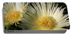 Ice Flowers Portable Battery Charger
