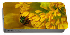 Portable Battery Charger featuring the photograph Iceland Poppy Pollination by J McCombie