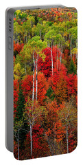 Idaho Autumn Portable Battery Charger