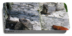 Iguana Bask In The Sun With You Portable Battery Charger by Patti Whitten