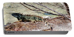 Portable Battery Charger featuring the photograph Iguana Iguana by Amar Sheow