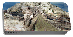 Iguana In The Sun Portable Battery Charger