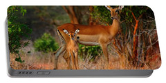Impala And Young Portable Battery Charger by Amanda Stadther