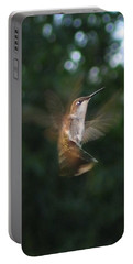 Portable Battery Charger featuring the photograph In Flight by Photographic Arts And Design Studio