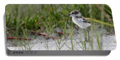 In The Grass - Wilson's Plover Chick Portable Battery Charger