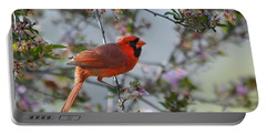 Portable Battery Charger featuring the photograph In The Spring by Nava Thompson
